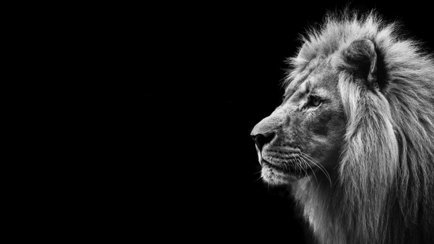 Lions Club Emsdetten